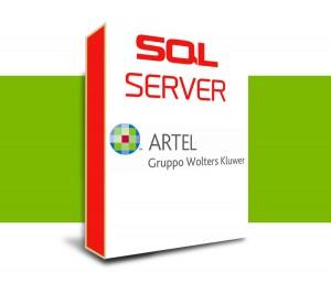 telecomputers_sw_artel_sqlserver